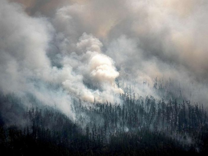 Forest Fires In Siberia Are Now Greater Than All Other